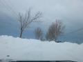 Corbu - Navodari 2014-02-02-11-43-33